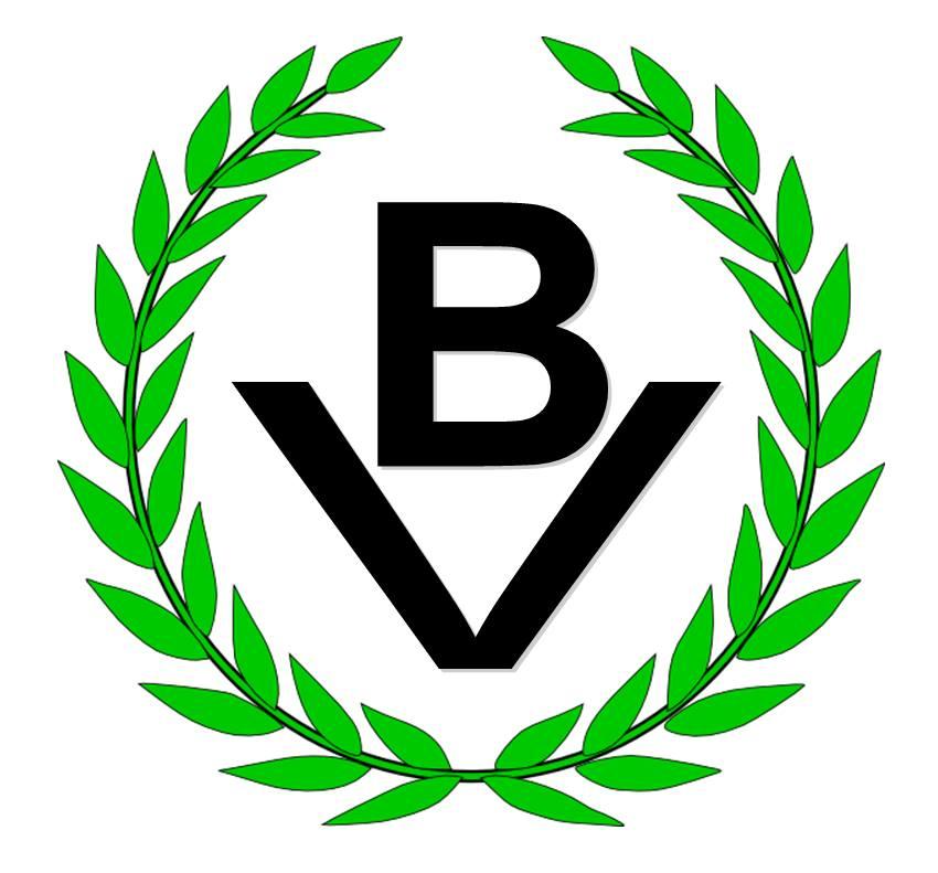 Logo Partido Bandera Vecinal